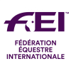 FEI_Logo_Lockup_Portrait_FR_RGB_Purple_HR